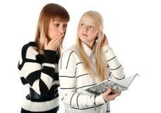 Zwei schöne Mädchen lasen Tagebuchbuch Lizenzfreie Stockfotos