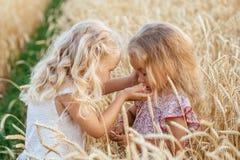 Zwei schöne Schwestern auf einem Weizenfeld Stockfotografie