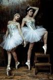 Zwei Schönheiten, die weißen Ballettröckchenrock tragen stockbilder