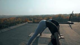 Zwei Schönheiten, die Yoga asana auf dem Dach, draußen üben stock video