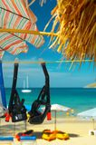 Zwei Schablonen und snorkles Lizenzfreie Stockfotografie