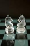 Zwei Schachpferde Stockfotografie