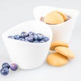 Zwei Schalen Pudding mit Blaubeeren und Keks Lizenzfreie Stockbilder