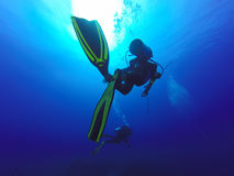 Zwei Schattenbilder von den Sporttauchern, die voll über dem lebhaftkorallenriff von Fischseeanemonen schwimmen Lizenzfreie Stockfotografie