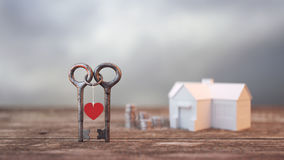 Zwei Schlüssel schlangen zusammen Hintergrund und einen Stapel des Geldes, Stockbild