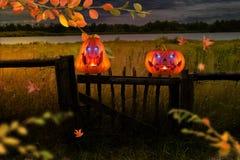Zwei schlecht lachende orange Kürbise mit dem Glühen mustert auf Bretterzaun nachts stockfoto