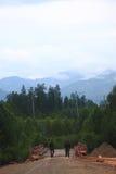 Zwei Schlosser irgendwo im dichten Wald Stockfoto