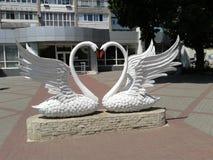 Zwei Schwäne als Symbol von Treue und von Liebe stockfotografie