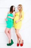 Zwei schwangere Frauen stockbild