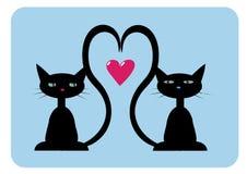 Zwei schwarze Katzen in der Liebe stockbilder