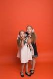 Zwei Schwestern in den schönen stilisierten Kleidern auf einem roten Hintergrund herein Stockfotos
