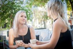 Zwei Schwestern, die Kaffee auf einem Sofa trinken Lizenzfreie Stockfotografie