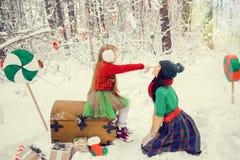 Zwei Schwestern, ein kleines Mädchen und ihre ältere Schwester, die in Kostüme von den Blumen typisch von den Elfen von Sankt-` s lizenzfreie stockfotografie