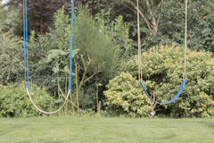 Zwei Schwingen über einem Rasen Lizenzfreies Stockfoto