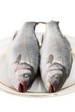 Zwei Seebarsch-Fische auf einer Platte Lizenzfreies Stockbild