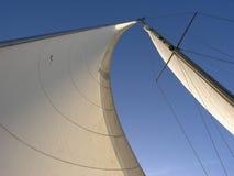 Zwei Segel: Genua und Großsegel Stockbilder