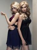 Zwei sexy Frauen Stockbild