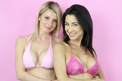 Zwei sexy Frauen gekleidet mit einem sexy Bikini Stockbilder