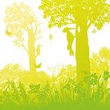 Zwei Spechte im Wald reißen Bäume ab lizenzfreie abbildung
