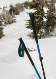Zwei Stöcke für das Wandern Lizenzfreies Stockbild