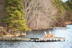 Zwei Stühle auf einem Dock Stockbilder