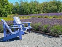 Zwei Stühle im Lavendelbauernhof Lizenzfreies Stockbild