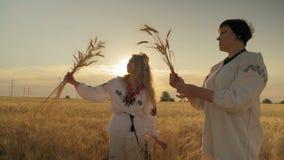 Zwei stehen der schöne nicht junge Frauen-Stand auf dem Feld und der Blick in den Weizen-Spitzen-Händen, die durch rote Bänder ge stock video footage