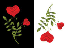 Zwei stilisiert rote Rosen. Karte Lizenzfreie Stockbilder