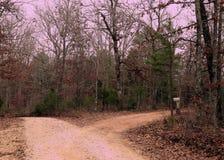 Zwei Straßen laufen int ein Holz auseinander stockbilder