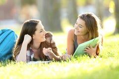 Zwei Studenten, die auf dem Gras sprechen Lizenzfreie Stockfotos