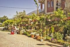 Zwei türkische Damen, die außer den Blumen und den Anlagen, die sie, sitzen in einer türkischen Straße verkaufen lizenzfreies stockbild