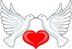 Zwei Tauben mit Herzen Lizenzfreies Stockfoto