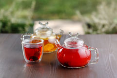 Zwei Teekannen Fruchttee Lizenzfreie Stockfotos