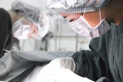 Zwei tierärztliche Chirurgen im Operationsraum Stockfoto