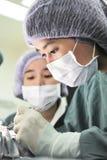 Zwei tierärztliche Chirurgen im Operationsraum Stockbild