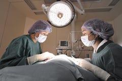 Zwei tierärztliche Chirurgen im Operationsraum Stockfotos