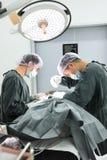 Zwei tierärztliche Chirurgen im Operationsraum Lizenzfreies Stockbild