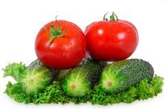 Zwei Tomaten und Gurke drei Lizenzfreie Stockbilder