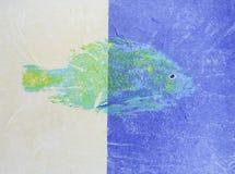 Zwei Tone Green Fish lizenzfreie stockfotos