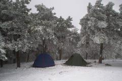 Zwei touristische Zelte Lizenzfreie Stockfotografie