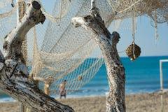 Zwei trockene weiße Niederlassungen und Fischernetz Stockbild