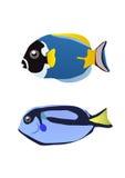 Zwei tropische Fische lizenzfreie abbildung