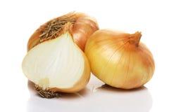 Zwei und halbe Zwiebel auf weißem Hintergrund Stockfotografie