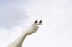 Zwei Vögel Stockbild