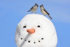 Zwei Vögel auf einem Schneemann Stockbilder