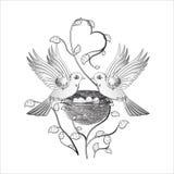 Zwei Vögel in der Liebe auf einem Nest Lizenzfreies Stockfoto