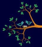 Zwei Vögel mit Nest Stockfotos