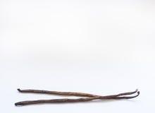 Zwei Vanillehülsen auf weißem Hintergrund Lizenzfreies Stockfoto