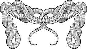 Zwei verdrehte Schlangen Dekoratives Element Lizenzfreie Stockbilder