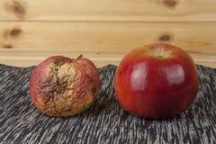 Zwei verschiedene Äpfel, frisch und verwelkt Schimmeliger Apfel als Konzept von Hautproblemen Lizenzfreie Stockfotos